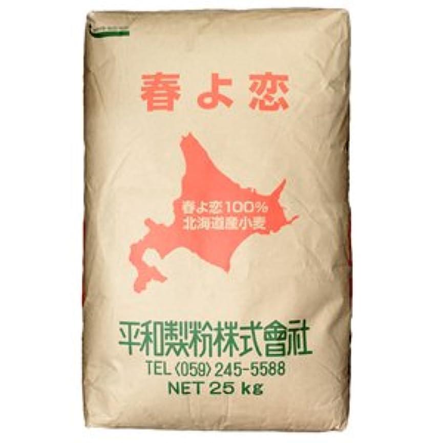 パケット悲しい汗春よ恋100% 北海道産小麦 25kg