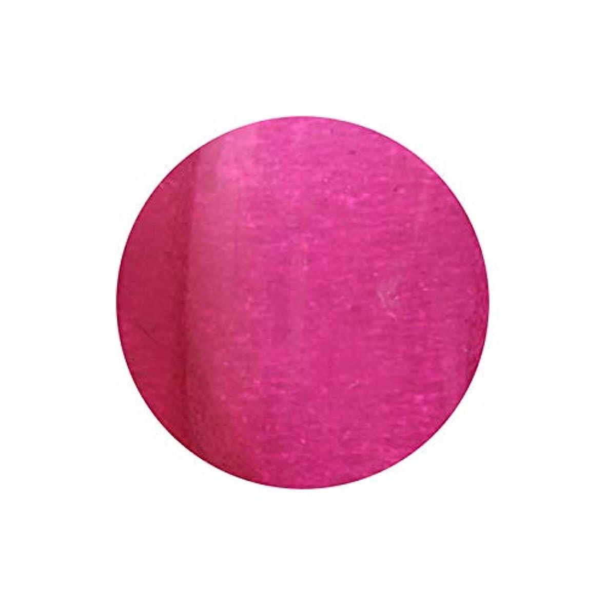 調整可能反乱ホイール【NEW】T-GEL COLLECTION カラージェル D223 スケルトンボルドー 4ml