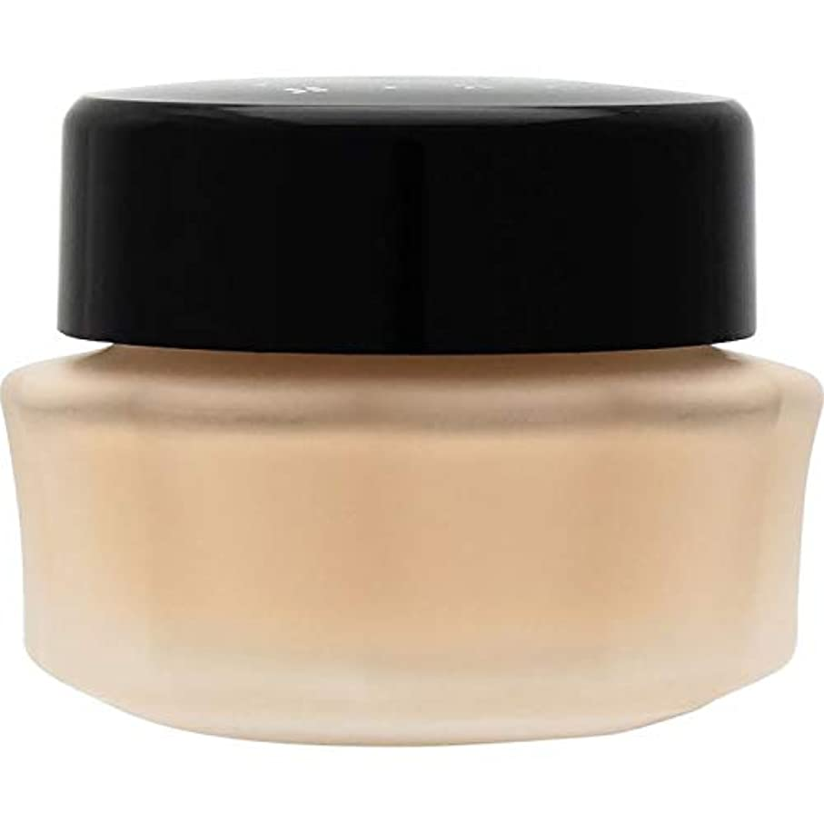 売る騒々しい閃光エルシア プラチナム 保湿美容液クリーム ファンデーション ピンクオークル 205 25g