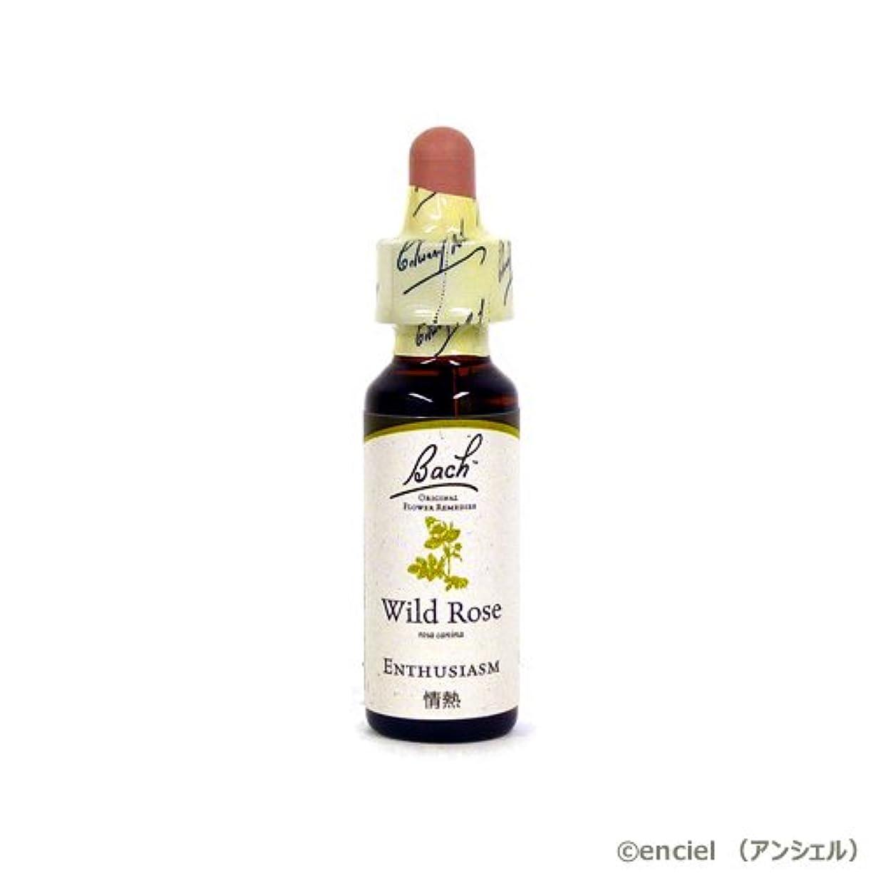 トリクル食い違い池バッチフラワー レメディ ワイルドローズ 10ml グリセリンタイプ 日本国内正規品