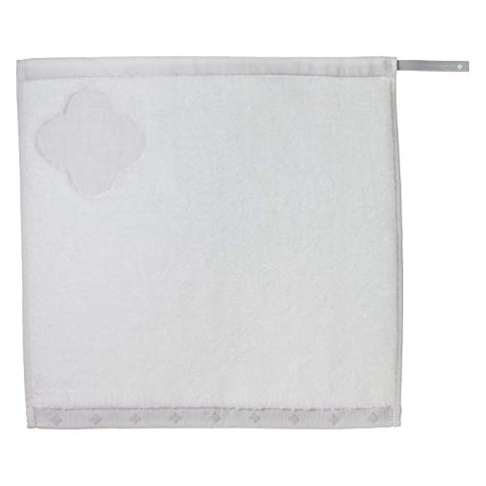 ファイル悪化させる変更KOBAKO(コバコ) スチーム洗顔タオル