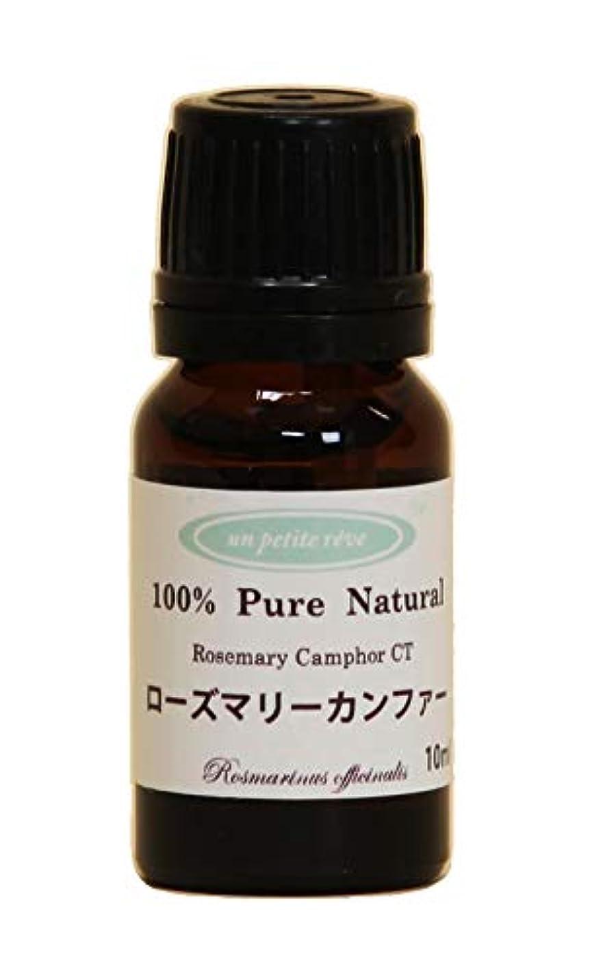 溶かすアプライアンス寂しいローズマリーカンファー  10ml 100%天然アロマエッセンシャルオイル(精油)