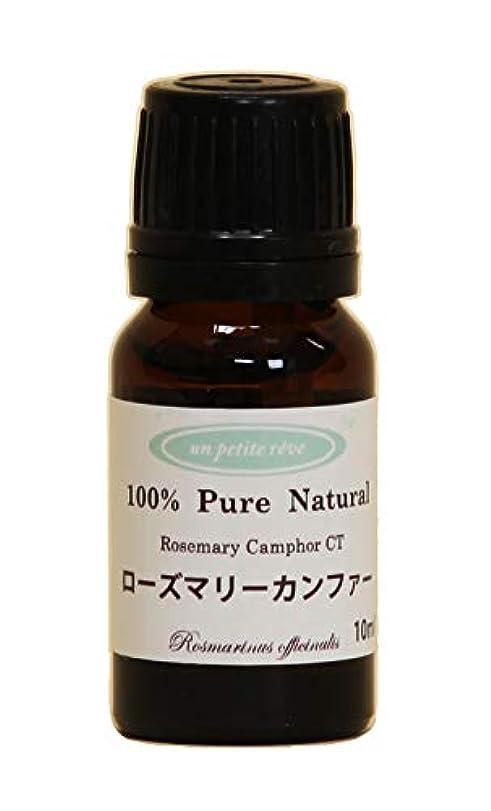 吸収する高度な物足りないローズマリーカンファー  10ml 100%天然アロマエッセンシャルオイル(精油)