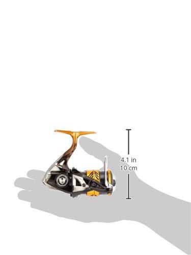 Shimano Reel Aging Movering Spinning Reel 18 Soare Bb C2000Ssgg