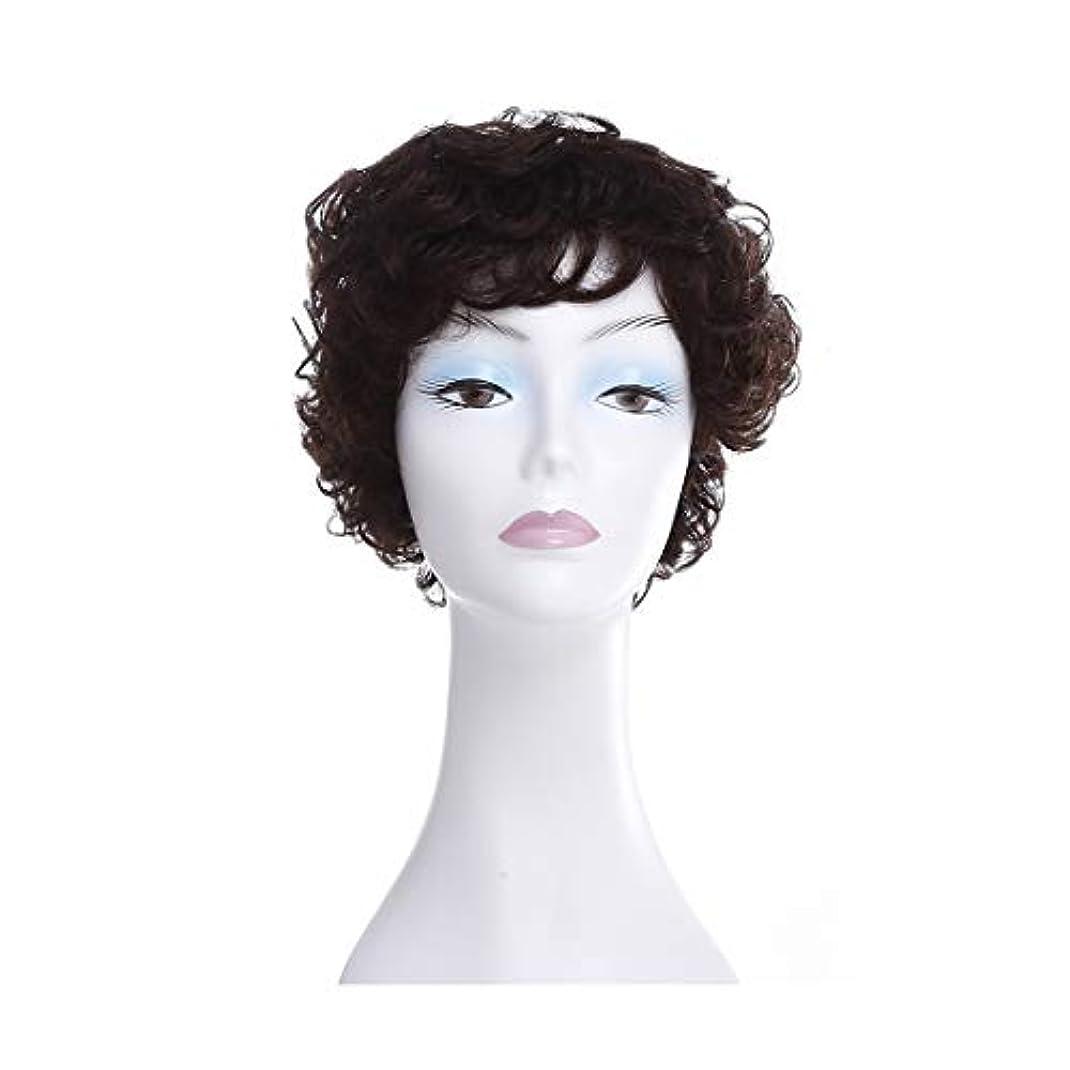 ログ黒割り当てるYOUQIU ふわふわショートカーリーヘアウィッグ中東や旧高齢女性ヘアスタイルのフルウィッグ帽子 (色 : Natural black)