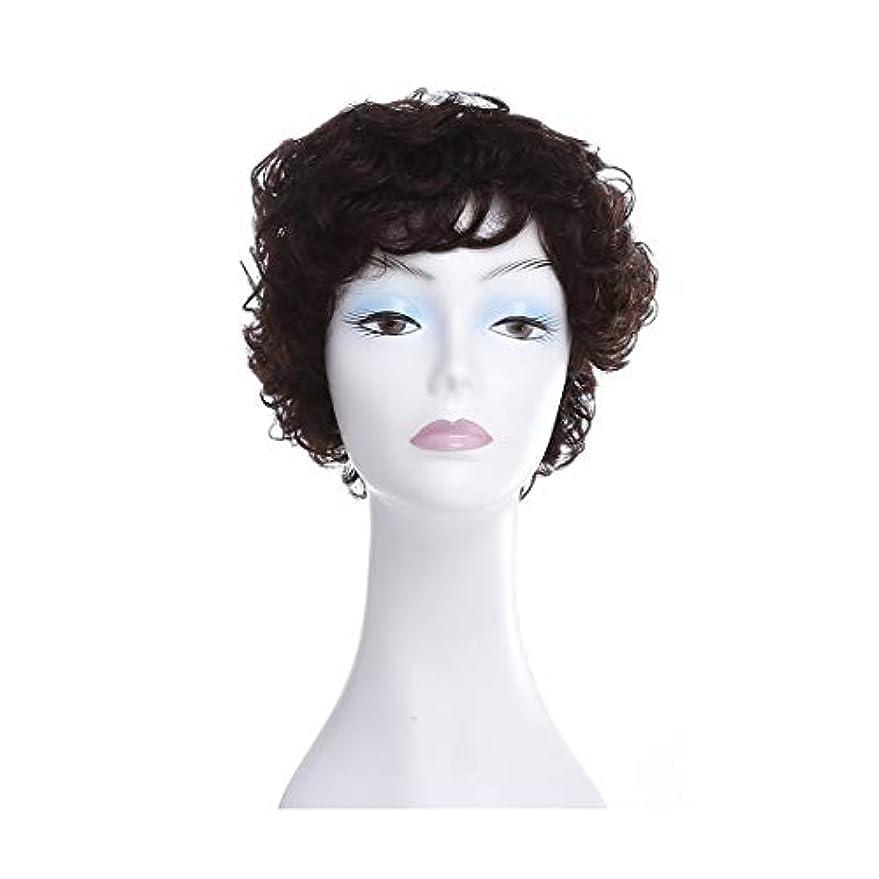 高音オーディションハンディキャップYOUQIU ふわふわショートカーリーヘアウィッグ中東や旧高齢女性ヘアスタイルのフルウィッグ帽子 (色 : Natural black)