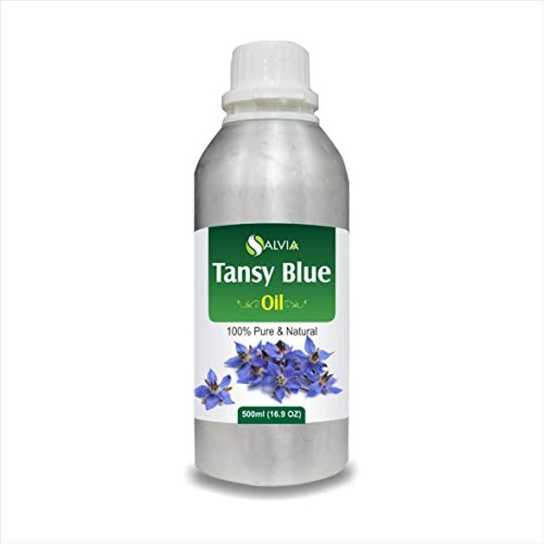 不測の事態削減これまでTansy Blue Oil (Tanacetum annuum) 100% Natural Pure Undiluted Uncut Essential Oil 500ml