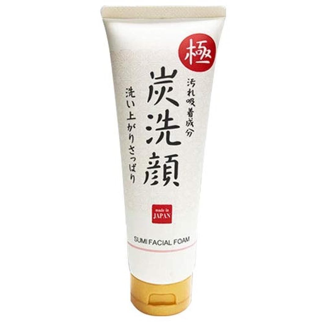 極 炭洗顔 日本製 炭 洗顔 フェイスケア 肌 美容 スキンケア クレンジング 素肌 もっちり泡洗顔 化粧品 メイク落とし 毛穴ケア 毛穴汚れ