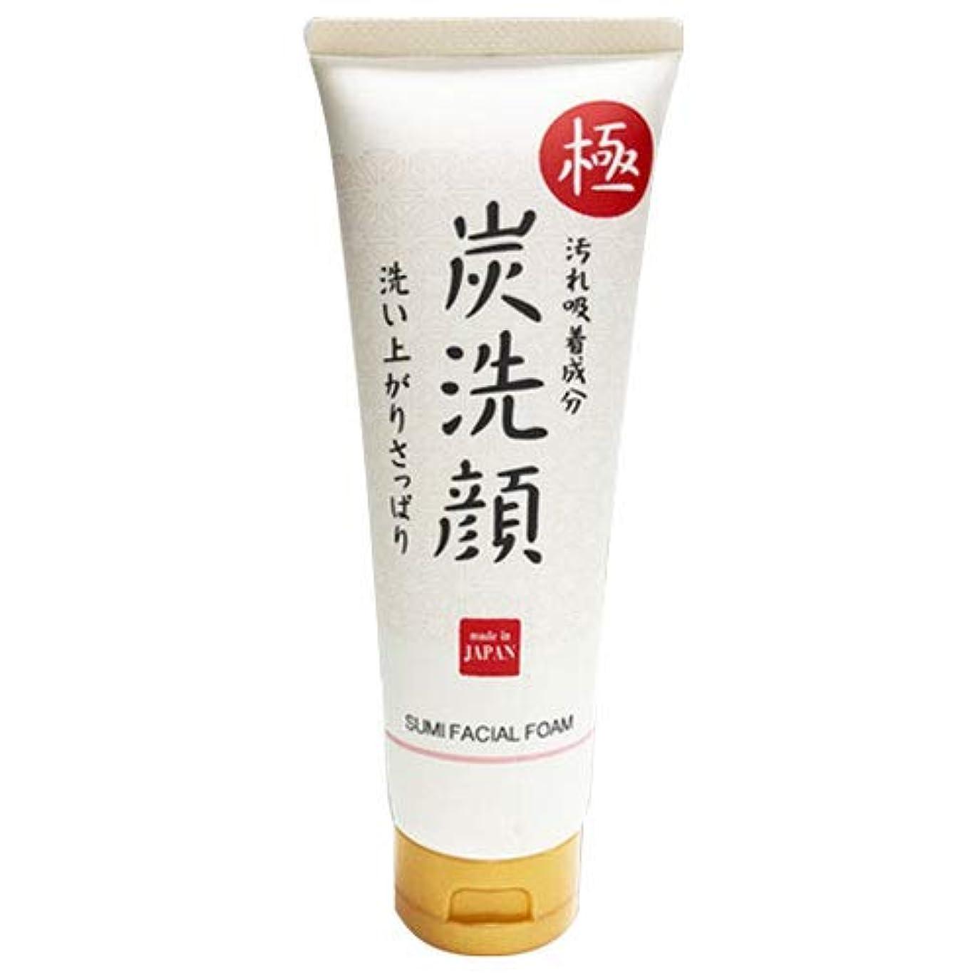 周辺管理しますハッチ極 炭洗顔 日本製 炭 洗顔 フェイスケア 肌 美容 スキンケア クレンジング 素肌 もっちり泡洗顔 化粧品 メイク落とし 毛穴ケア 毛穴汚れ