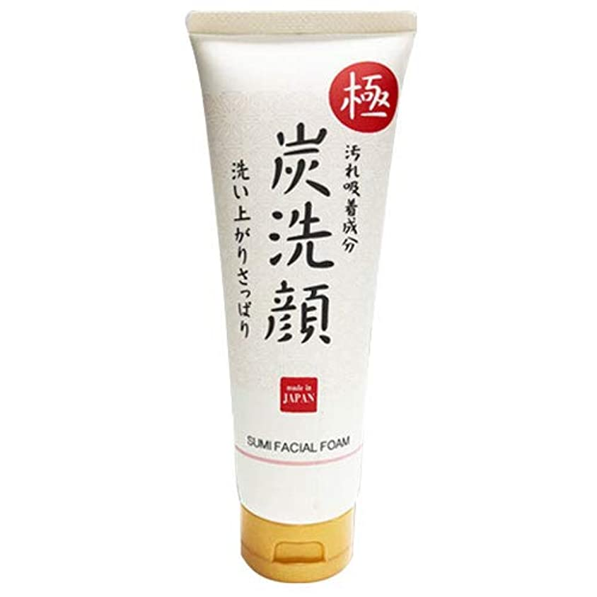 展開する頂点強調する極 炭洗顔 日本製 炭 洗顔 フェイスケア 肌 美容 スキンケア クレンジング 素肌 もっちり泡洗顔 化粧品 メイク落とし 毛穴ケア 毛穴汚れ