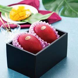 みやざき完熟マンゴー JA宮崎経済連  赤秀 2Lサイズ 2玉入り 宮崎県産 マンゴー
