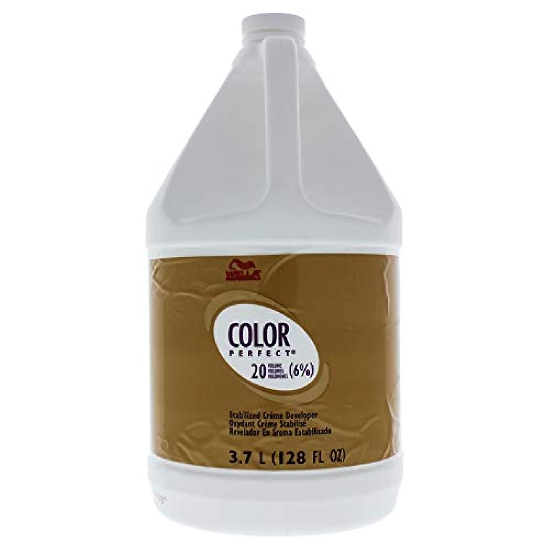 不確実マット忍耐Color Perfect Stabilized Cream Developer 6 Percent 20 Vol