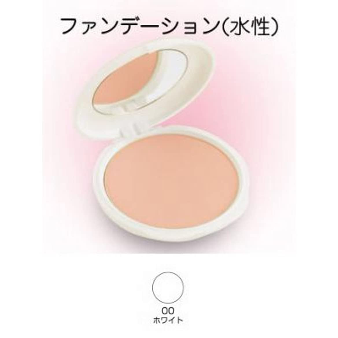 インレイ防水フライトツーウェイケーキ 28g 00ホワイト 【三善】