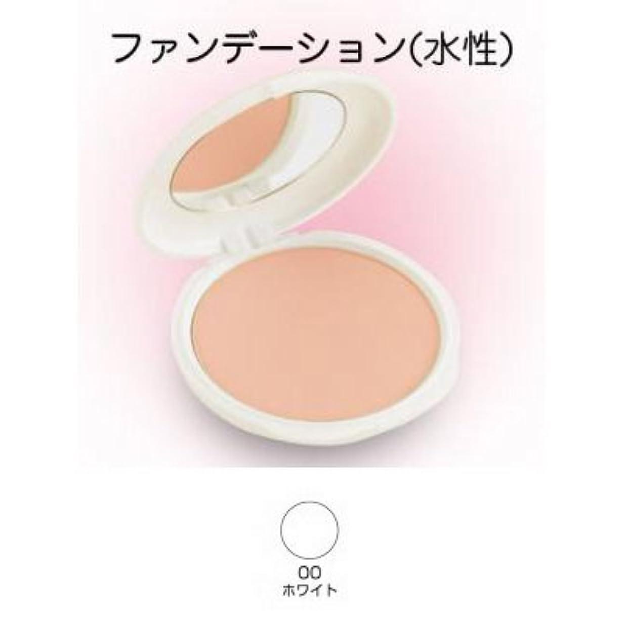 キャンパスブランド症状ツーウェイケーキ 28g 00ホワイト 【三善】