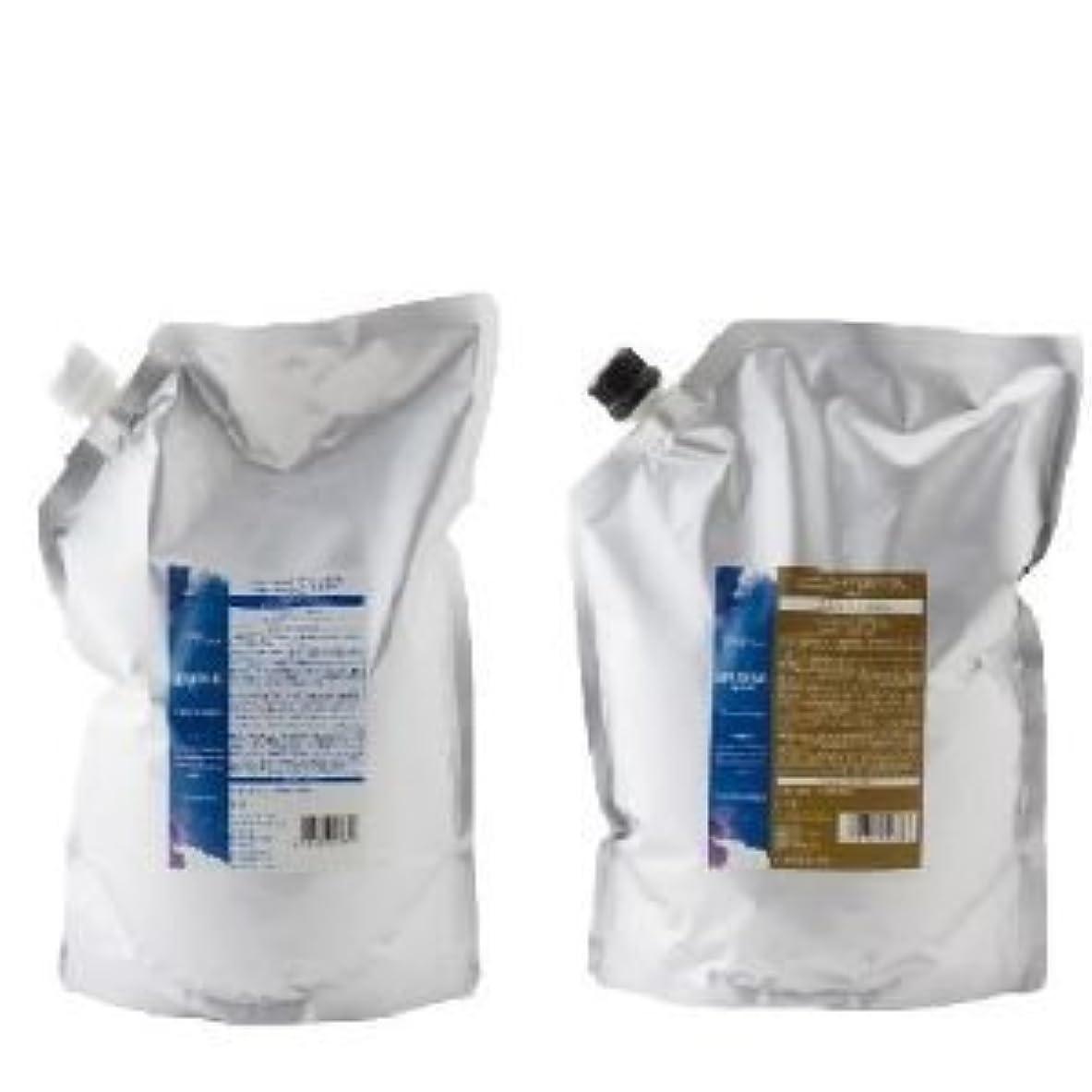暗殺する袋簡潔なデミ ヘアシーズンズ アロマシロップス フローズンムーン シャンプー2000ml & トリートメント2000g セット