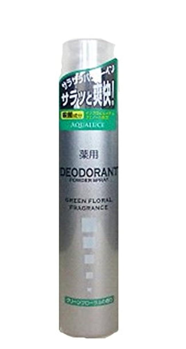 ヘッジ魔術麺アクアルーチェ 薬用デオドラントスプレー グリーンフローラルの香り 205g
