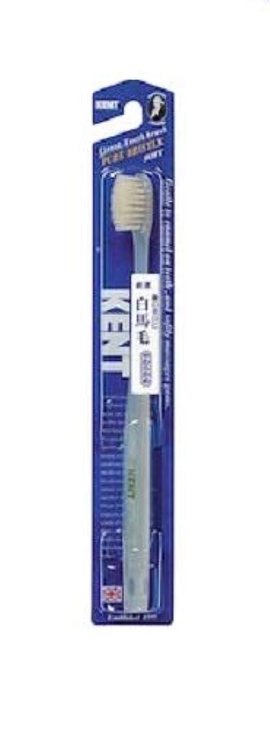 退屈な電気陽性銀KENT 白馬毛歯ブラシ やわらかめ コンパクトヘッド KNT-1132