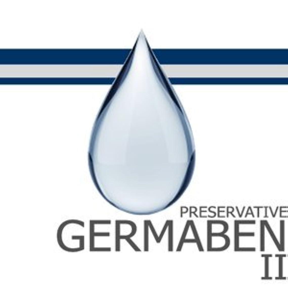 スケジュールアマチュアピジンgermaben II