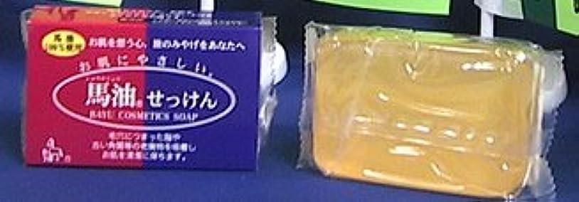 シンカン満たすフィルタショウキリュウ馬油石鹸120g×2