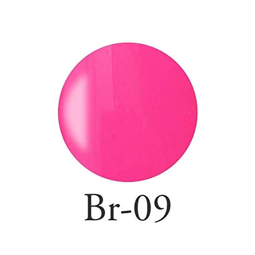 正当化する削除する癌エンジェル クィーンカラージェル コリンヌピンクBr-09 3g