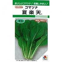 小松菜 種 夏楽天 小袋(約3ml)