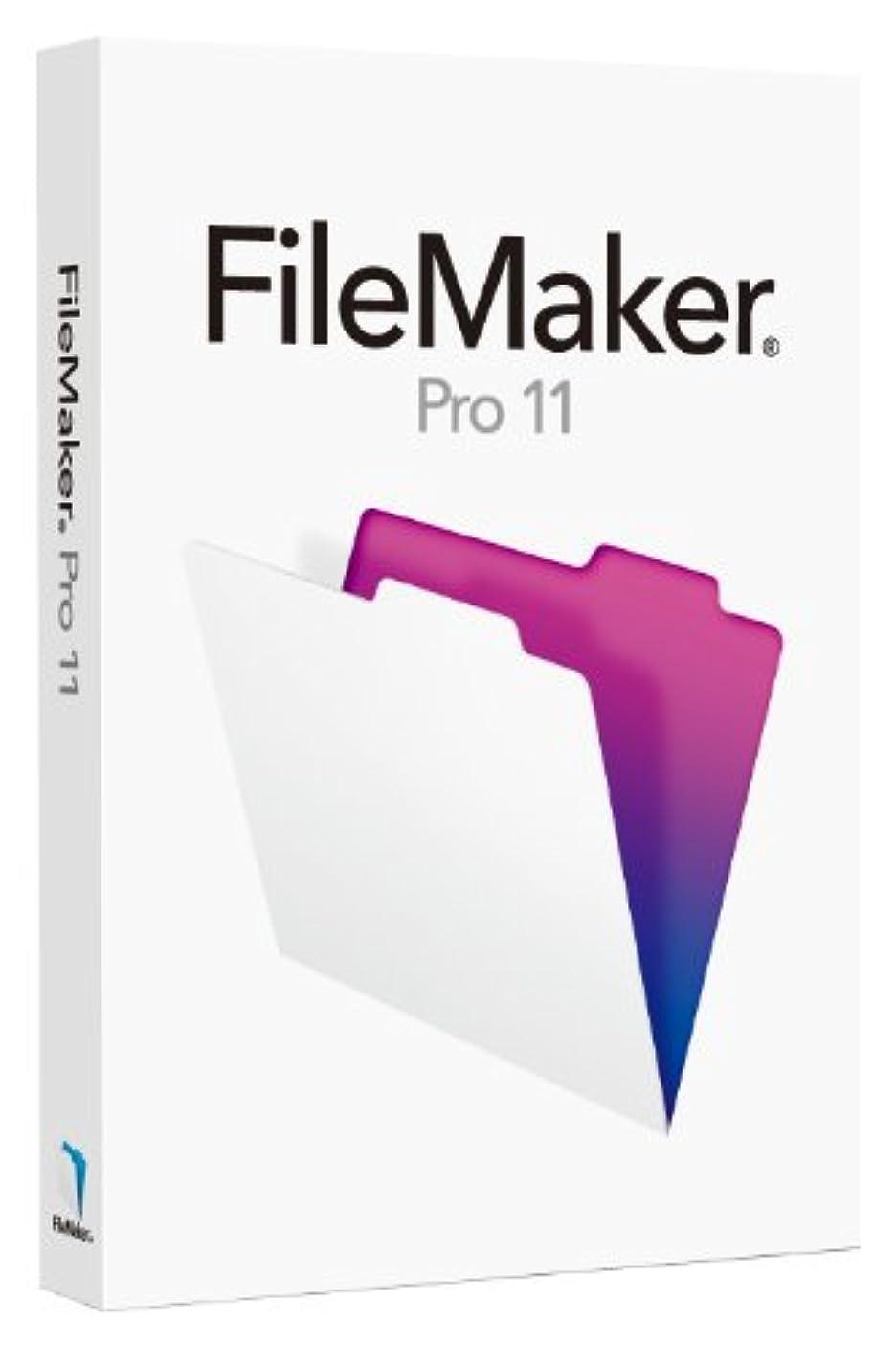 静脈そうでなければスライスFileMaker Pro 11