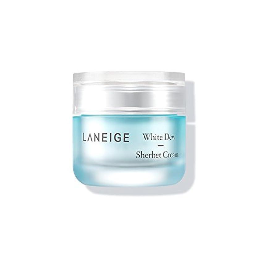 叙情的な不正確開発Laneige White Dew Sherbet Cream ホワイトデューシャーベットクリーム50ml