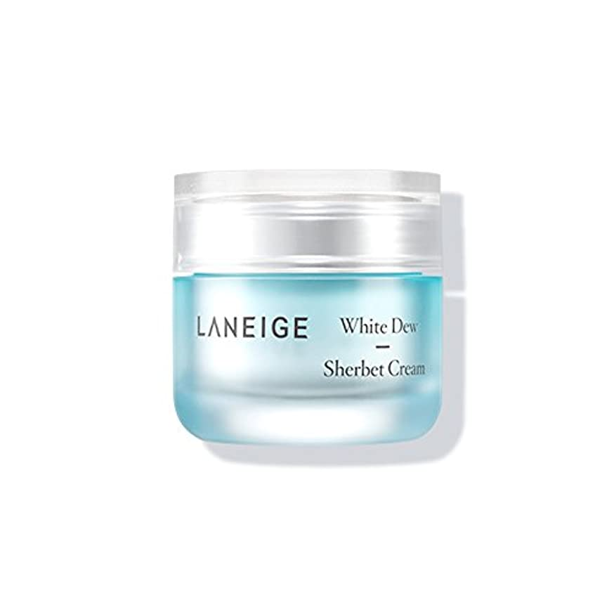 傑出した魔法敬意を表してLaneige White Dew Sherbet Cream ホワイトデューシャーベットクリーム50ml