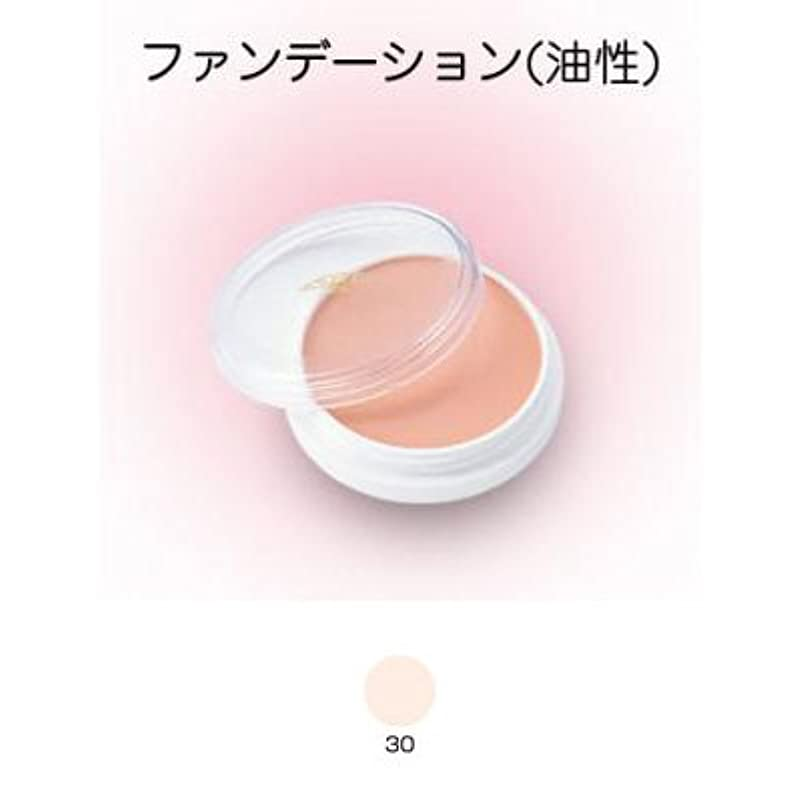 スキム老朽化した発症グリースペイント 8g 30 【三善】ドーラン