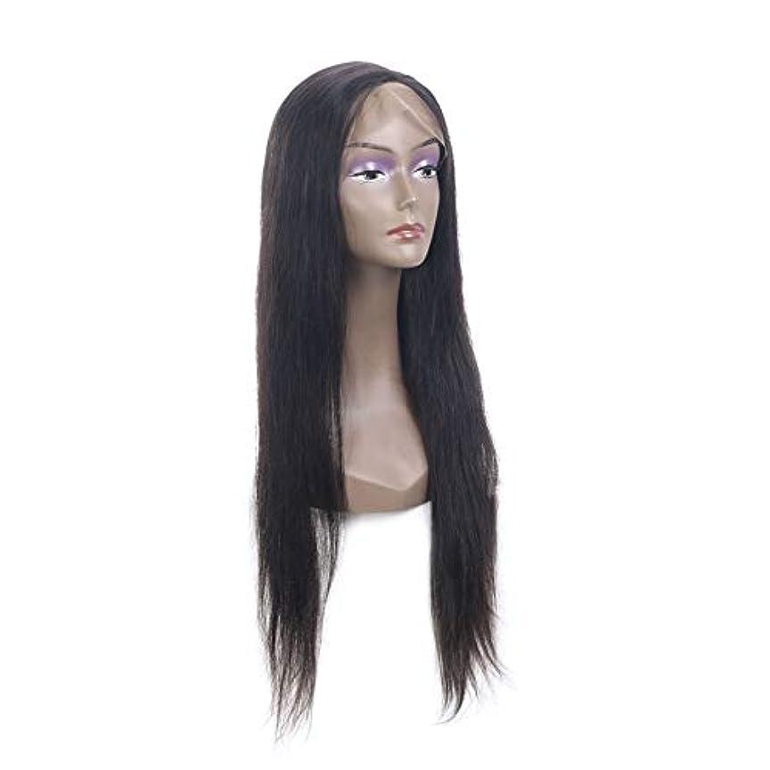 SRY-Wigファッション ファッションレディースロングストレートウィッグ女性用デザインの凝った服アクセサリーコスプレパーティーウィッグブラック (Color : ブラック, Size : 18inch)