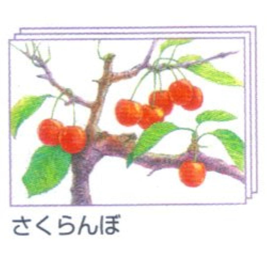 リップすべき優越塗り絵物語 枝付の果物編 ※さくらんぼ