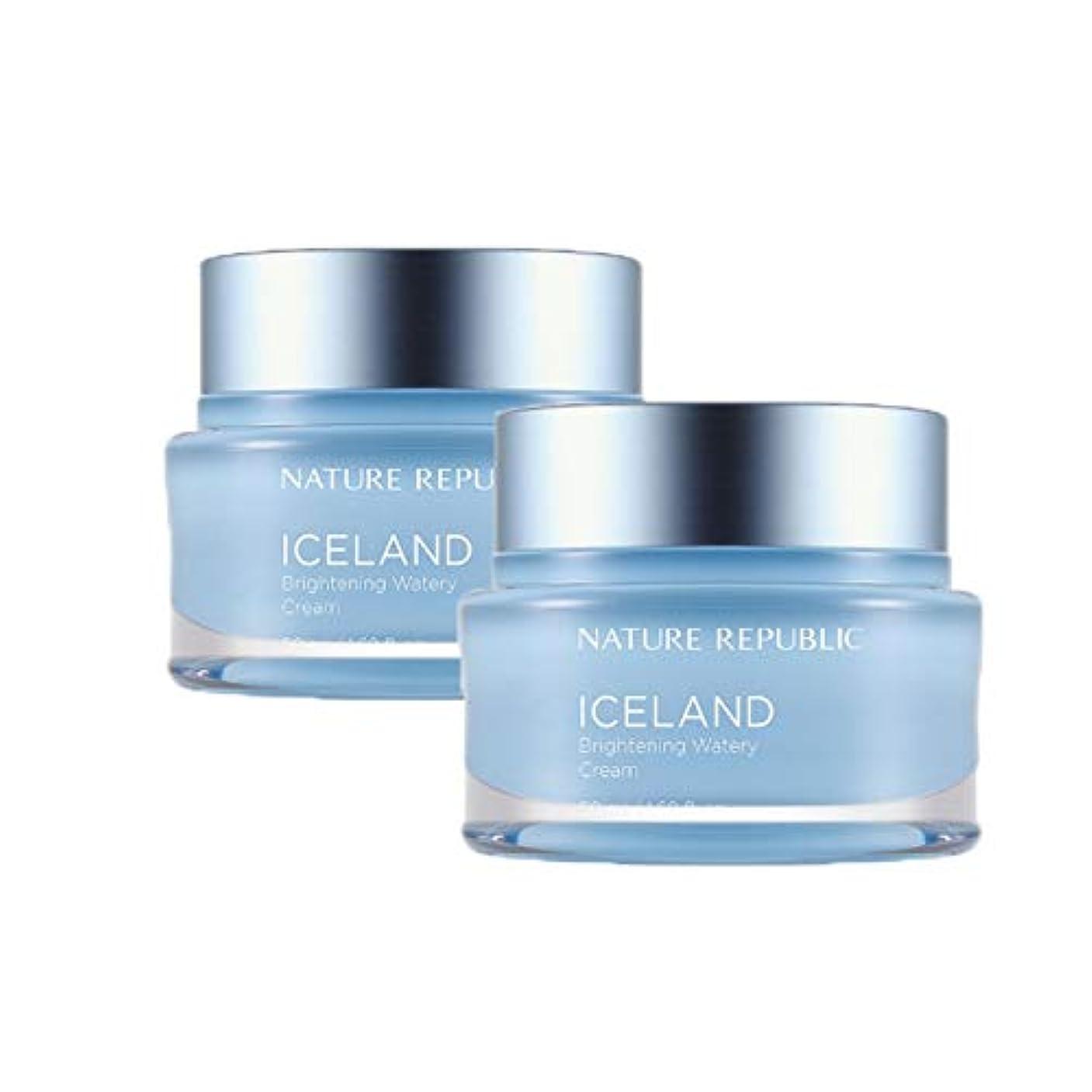 制限された褒賞誤ネイチャーリパブリックアイスランドブライトニング水分クリーム50mlx2本セット韓国コスメ、Nature Republic Iceland Brightening Watery Cream 50ml x 2ea Set Korean Cosmetics [並行輸入品]