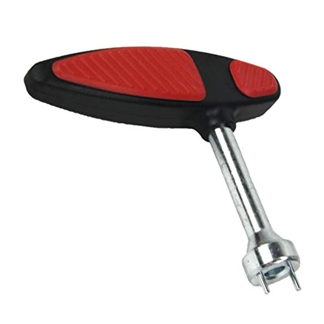 ディンカルビル羽ゼリー1本 ゴルフシューズ 2ポイントスパイク 鋲交換レンチ 2ピンTハンドル 軽量