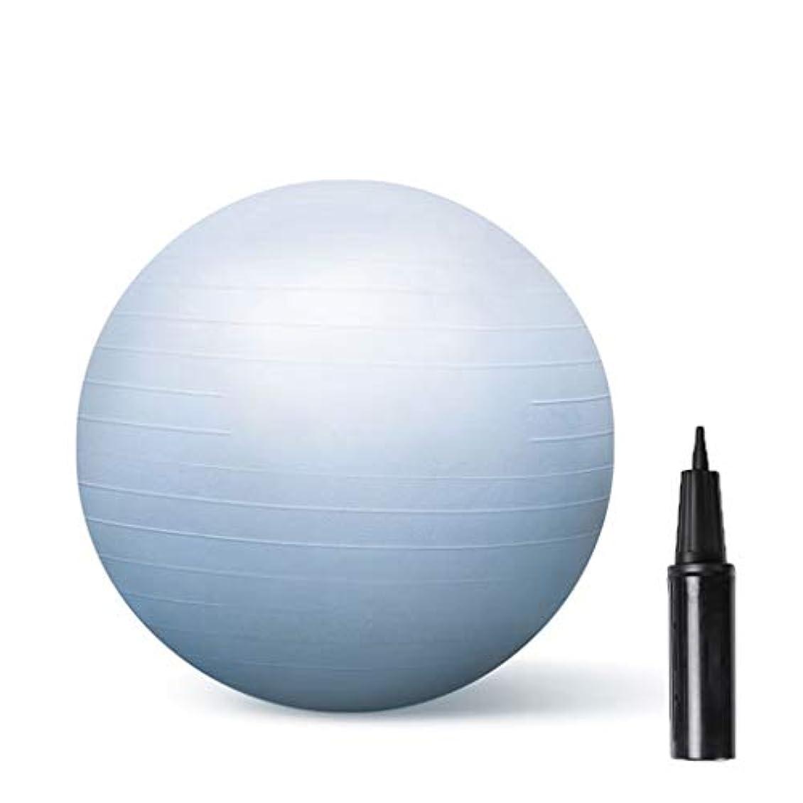 ポジションネットベーシックDHR-バランスボール エクササイズジム?ヨガスイスボールアンチバースト滑りにくいフィットネス妊娠出産ボールエアーポンプで65分の55/75センチメートル