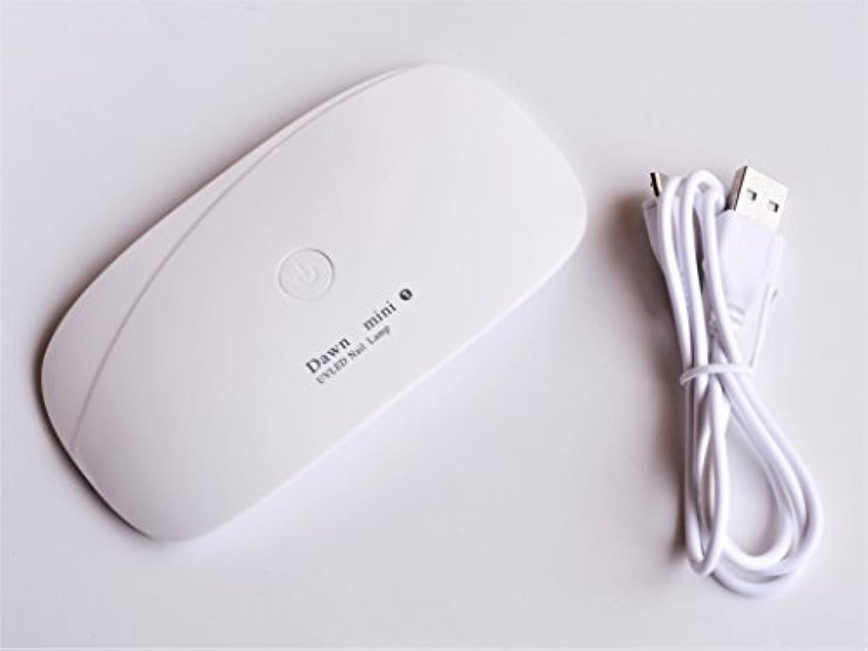 十分に羽ジャンクコンパクトUVライト スマートジェルライト UV/LED兼用スマートライト レジン封入 ネイル (ピュアホワイト)