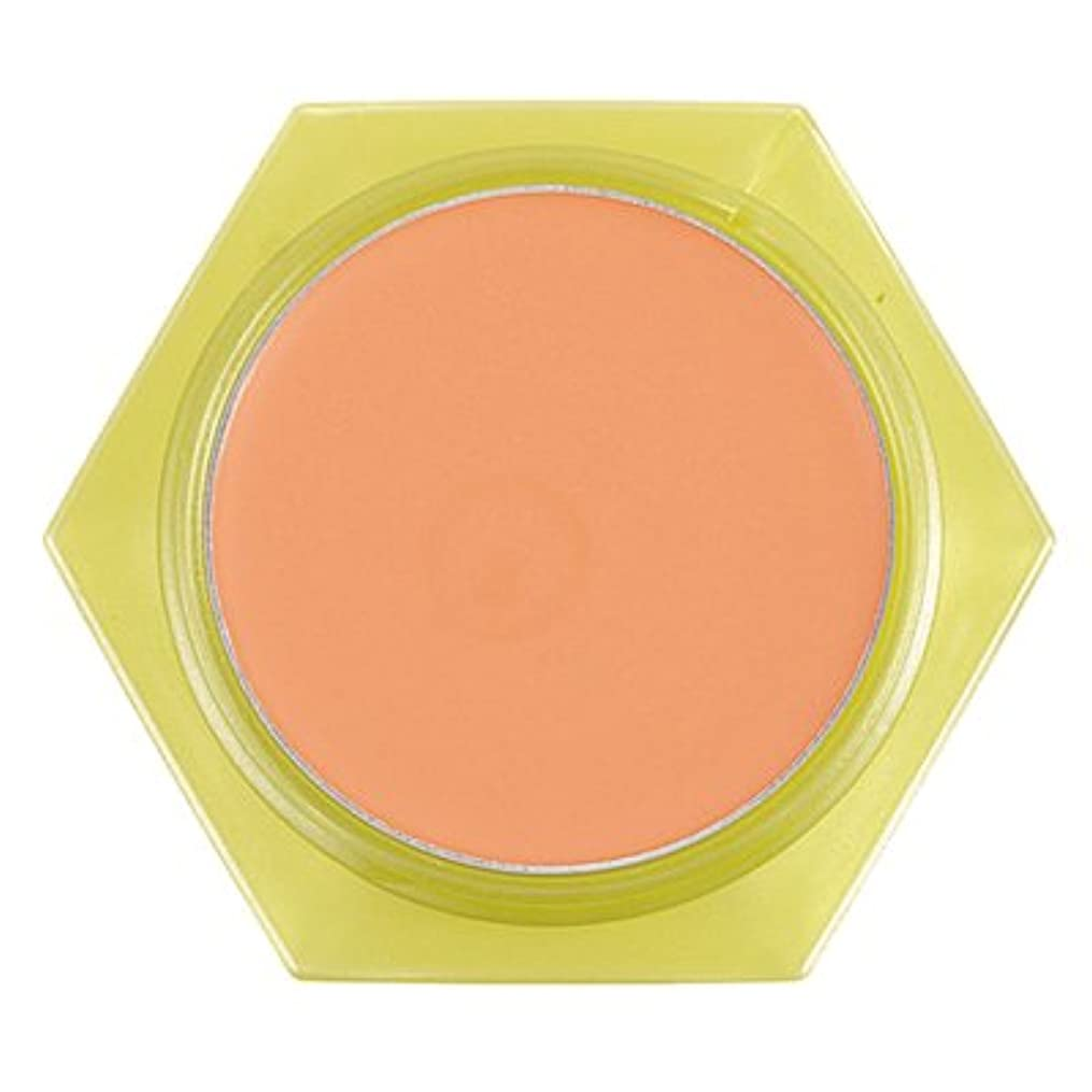 暖かさ二不忠かづきれいこ カバーリングファンデーション オレンジ<OR>