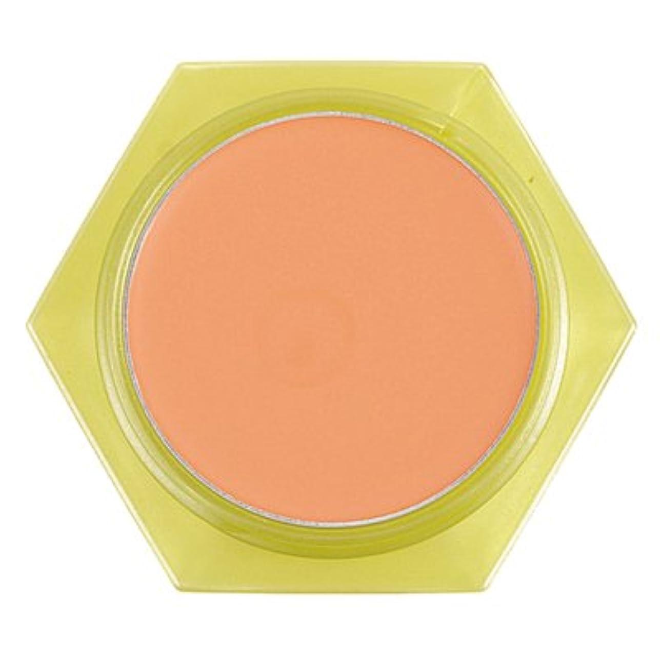 伸ばすパニック種かづきれいこ カバーリングファンデーション オレンジ<OR>