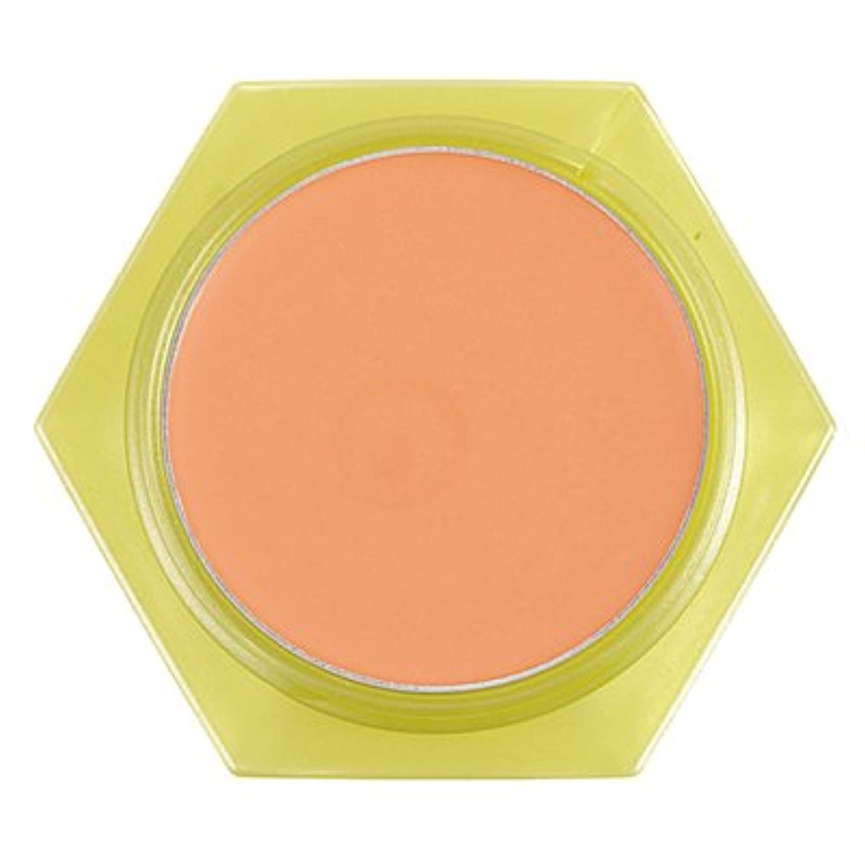 ケーブルトン遅滞かづきれいこ カバーリングファンデーション オレンジ<OR>