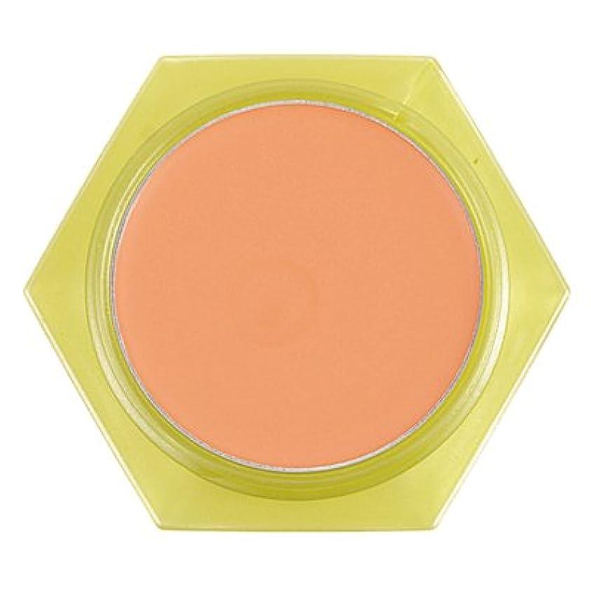 唇独立したコテージかづきれいこ カバーリングファンデーション オレンジ<OR>