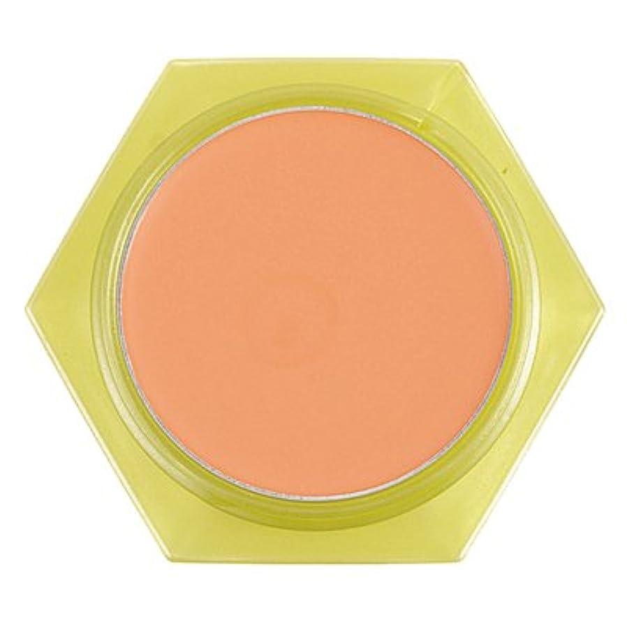 エントリ遺伝的愛国的なかづきれいこ カバーリングファンデーション オレンジ<OR>