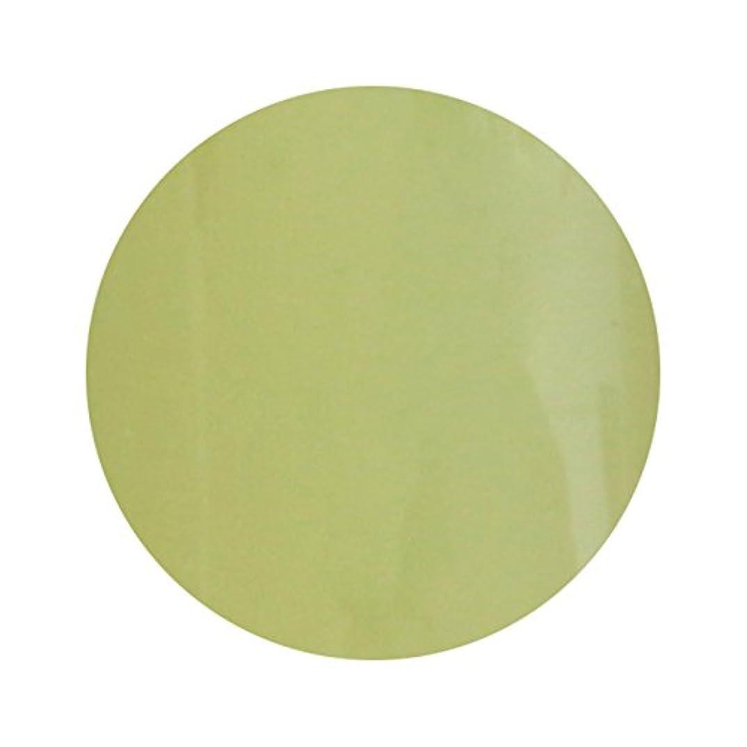 たまに窒息させるシリングT-GEL COLLECTION ティージェル カラージェル D211 スモーキーレモン 4ml