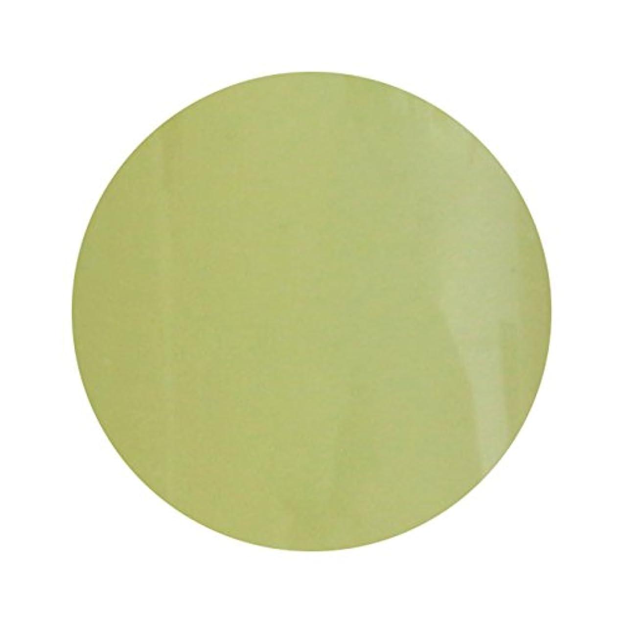 設置社員嘆願T-GEL COLLECTION ティージェル カラージェル D211 スモーキーレモン 4ml