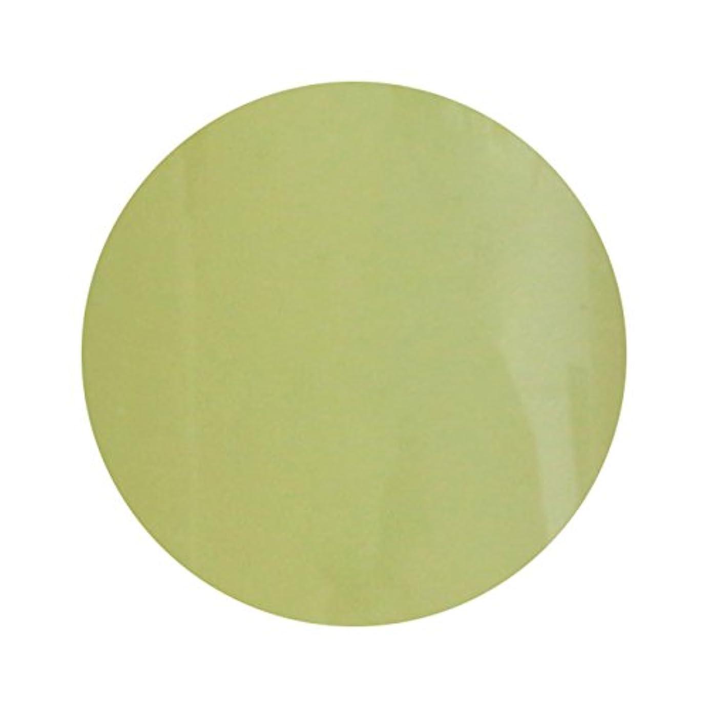 慣れる役に立つフォアマンT-GEL COLLECTION ティージェル カラージェル D211 スモーキーレモン 4ml