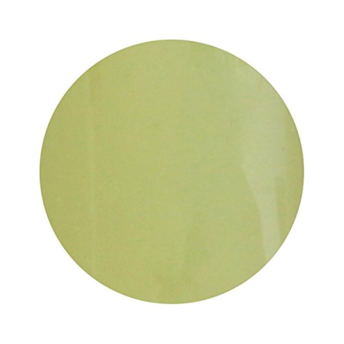 T-GEL COLLECTION ティージェル カラージェル D211 スモーキーレモン 4ml