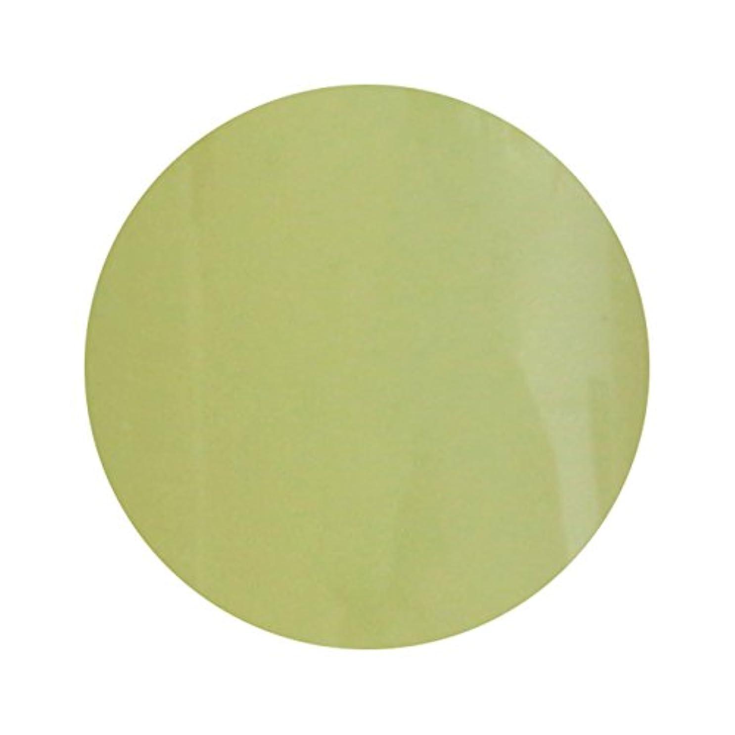 寺院床温度計T-GEL COLLECTION ティージェル カラージェル D211 スモーキーレモン 4ml