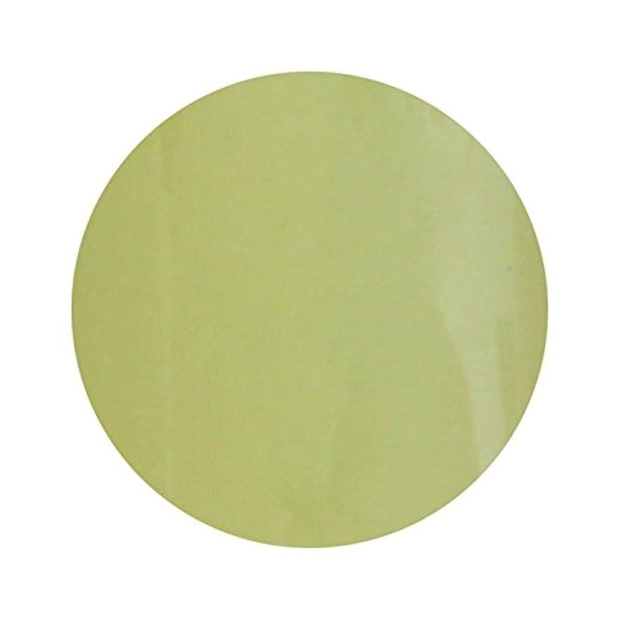 対角線イタリック処理するT-GEL COLLECTION ティージェル カラージェル D211 スモーキーレモン 4ml