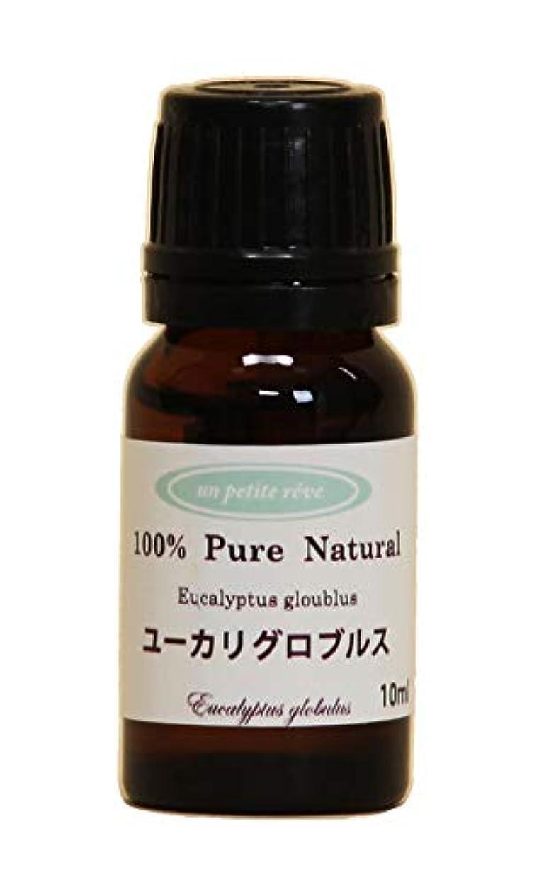 めったに送る大事にするユーカリグロブルス 10ml 100%天然アロマエッセンシャルオイル(精油)