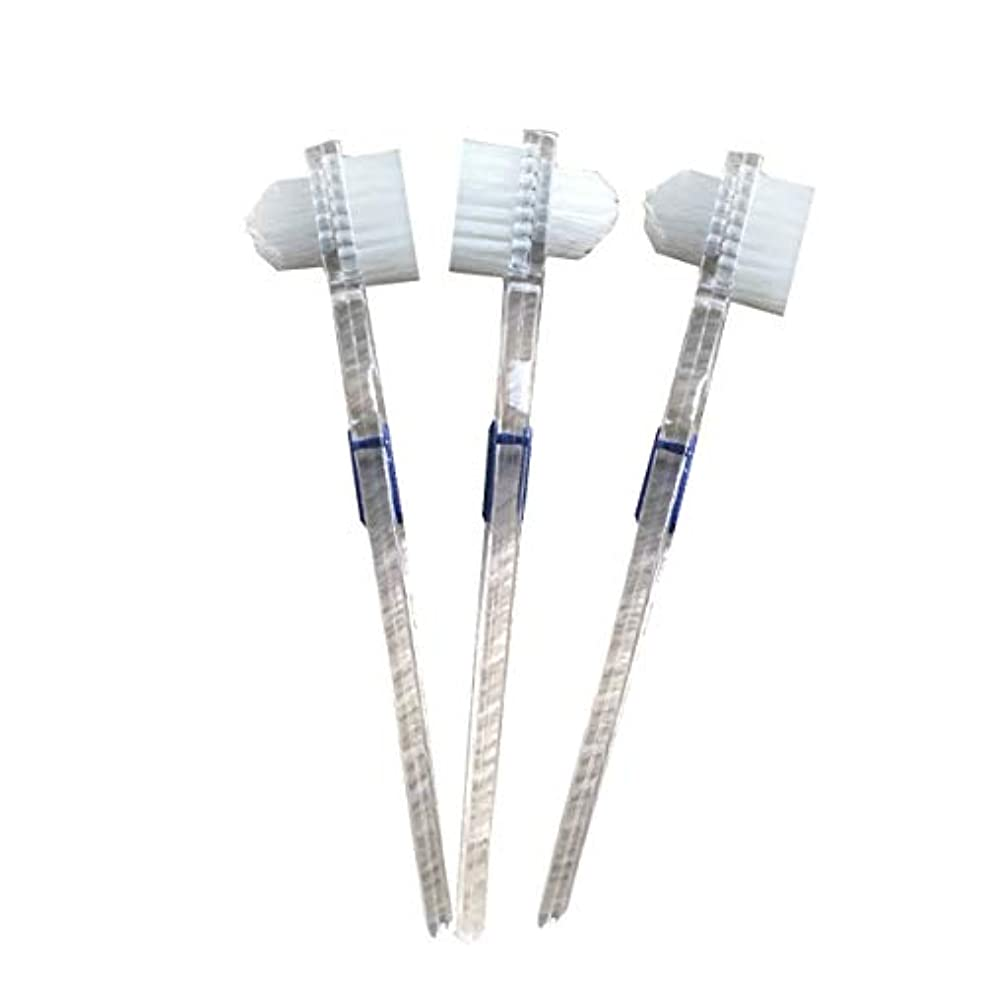 植物の溶接適合Healifty 二重毛ヘッド義歯ブラシセット義歯ケア9pcsの歯のクリーニングツール