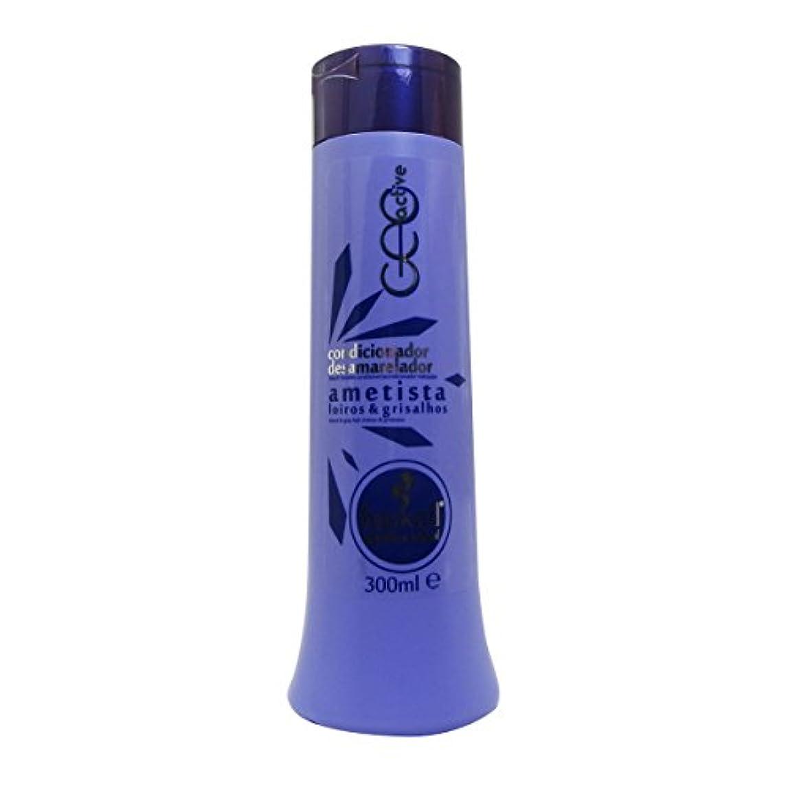 トリプル口径フィードバックHaskell Ametista Conditioner 300ml [並行輸入品]