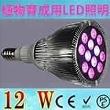 植物育成用LEDライト 水耕栽培ライト  12W E26 野菜工場、植物農園、植物栽培工場などに !!!TOWA